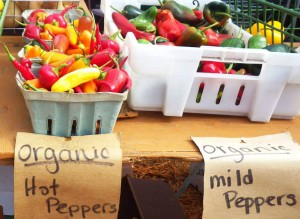 Englewood Farmers Market_rev